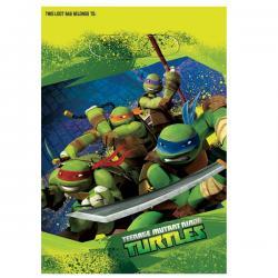 Teenage Mutant Ninja Turtles Loot Bags